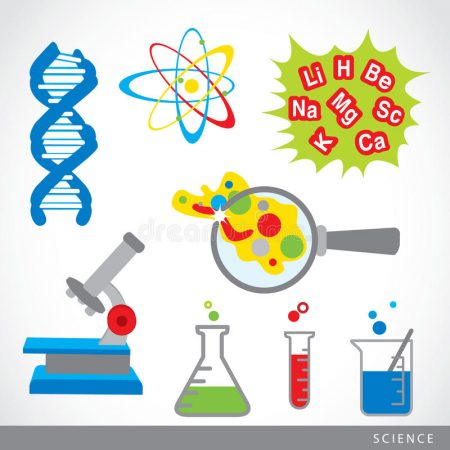 Science for Primary 2